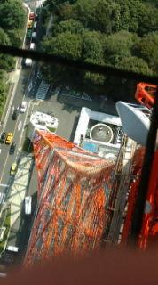 東京タワーにきています!